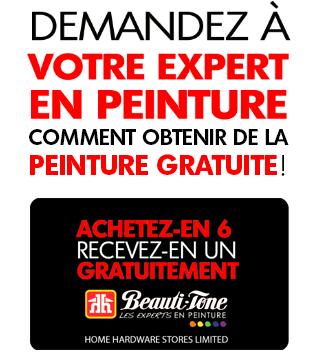 DEMANDEZ À VOTRE EXPERT EN PEINTURE COMMENT OBTENIR DE LA PEINTURE GRATUITE!